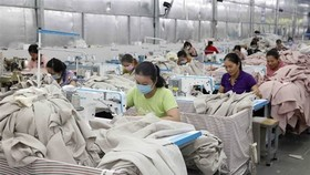 Vietnam not only successfully contained the pandemic but also posted a GDP growth of 2.91 percent, with the International Monetary Fund (IMF) saying it was among countries with the best economic achievements. (Photo: VNA)