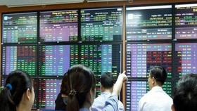 Small investors continue inundating markets