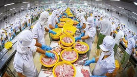 Export targets difficult to meet under pandemic