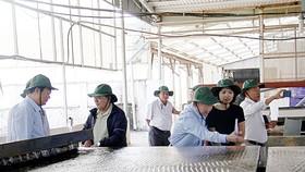Các nhà khoa học thăm nhà máy chế biến titan của Tập đoàn Hưng Thịnh