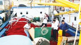 Tàu vỏ thép kém chất lượng ở Bình Định đã đẩy một số ngư dân vào cảnh khốn khó. Ảnh: NGỌC OAI