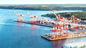 Cảng biển ở Mỹ chưa khôi phục hoạt động vì dịch Covid-19.  Ảnh: AP