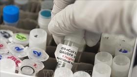 Nghiên cứu phát triển vaccine phòng COVID-19 tại phòng thí nghiệm của Novavax ở Rockville, Maryland (Mỹ). Ảnh: AFP/TTXVN