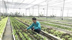 Đề nghị được xây dựng công trình phục vụ nông nghiệp trên đất trống