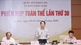 Chủ nhiệm Ủy ban Pháp luật của Quốc hội Hoàng Thanh Tùng phát biểu. Ảnh: TTXVN