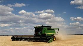 Thu hoạch lúa mạch tại New South Wales, Australia. Ảnh: AFP/TTXVN