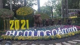 Khai mạc Hội Hoa xuân Tết Tân Sửu 2021 tại Công viên Văn hóa Tao Đàn