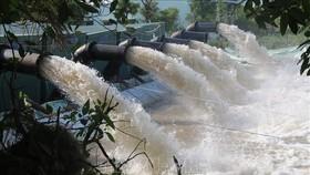 Huyện Gò Công, Tiền Giang triển khai hàng trăm điểm bơm chuyền trữ nước ngọt phục vụ sản xuất và đời sống, phòng chống hạn bảo vệ lúa. Ảnh: TTXVN