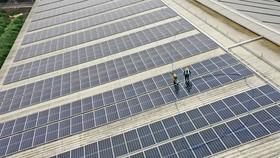 TH tạo nguồn năng lượng xanh từ mái nhà trang trại công nghệ cao đạt kỷ lục thế giới