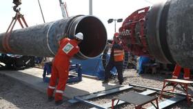 Công nhân làm việc tại dự án Nord Stream 2