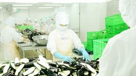 Thiếu chủ động, doanh nghiệp nguy cơ mất thị phần xuất khẩu