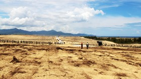 """Hiện trường vụ việc dự án điện mặt trời """"nuốt"""" 5,26ha đất và rừng phòng hộ ven biển Mỹ An"""