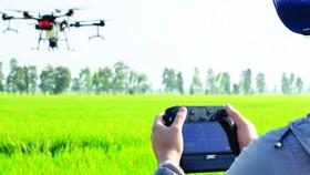 Sử dụng thiết bị bay không người lái trong sản xuất nông nghiệp tại Australia