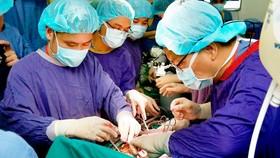 Kỳ tích lấy 6 tạng từ một người chết não ghép cho 5 bệnh nhân cùng lúc