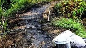 Lộ rõ nhóm người và phương tiện đổ trộm dầu thải gây ô nhiễm nguồn nước sông Đà