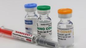 Bộ Y tế thống nhất nghiệm thu kết quả thử nghiệm lâm sàng giai đoạn 1 vaccine Nano Covax