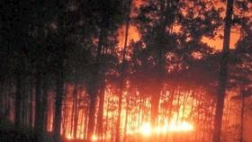 Nỗ lực khống chế và dập tắt đám cháy