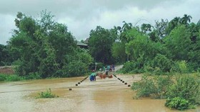 Người dân ở huyện Hương Khê, Hà Tĩnh đưa gia súc đi tránh lũ