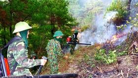 Lực lượng của Trung đoàn 841 nỗ lực dập lửa cứu rừng