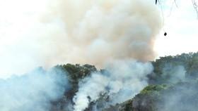 Hiện trường thời điểm xảy ra vụ cháy rừng ở xã Kỳ Bắc