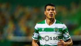 Pedro Porro đã thấy cơ hội phát triển tại Sporting Lisbon.