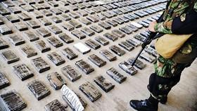 Colombia phát hiện 1,1 tấn cocaine
