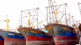 Ngư dân Quảng Nam thắng kiện đơn vị đóng tàu tàu vỏ thép