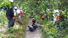 Du lịch miệt vườn ở huyện Phong Điền (Cần Thơ) thu hút nhiều du khách      Ảnh: LÊ PHƯƠNG