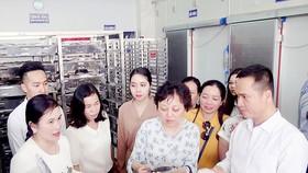 Ban Quản lý An toàn thực phẩm TPHCM khảo sát cơ sở kinh doanh thực phẩm
