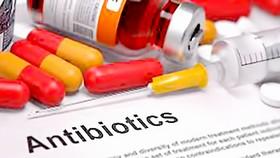 Báo động lạm dụng thuốc kháng sinh