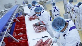 Dây chuyền sản xuất theo công nghệ thịt mát. Ảnh: TTXVN