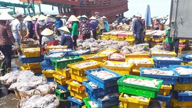 Lên hàng hải sản tại cảng cá Phước Tỉnh (huyện Long Điền)