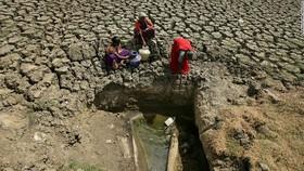 Người dân ở Chennai, Ấn Độ, khổ sở vì thiếu nước