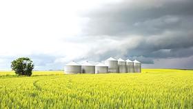 EU đang hướng đến nền nông nghiệp sinh học