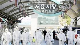 Lực lượng chức năng Hàn Quốc khử trùng ở TP Daegu. Ảnh: YONHAP
