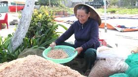 Bà Nguyễn Thị Liên đang chế biến ruốc thành mắm