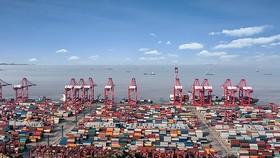 CPTPP và RCEP giúp hội tụ các nền kinh tế châu Á