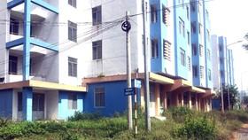 Nhiều khu đất công và nhà tái định cư bị bỏ trống