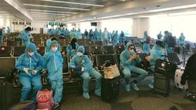 340 công dân Việt Nam từ Mỹ về nước an toàn