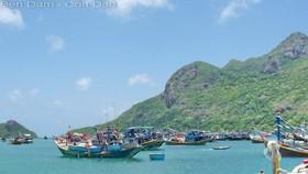 Xây dựng khu tái định cư Côn Đảo ở vị trí không có rừng