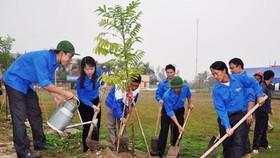 10 năm tới, Bến Tre sẽ trồng 10 triệu cây xanh