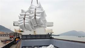 60 tấn gạo Việt Nam đầu tiên vào Anh theo UKVFTA