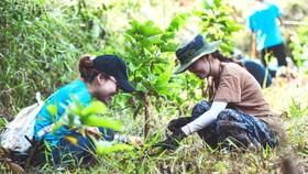 """Bạn trẻ tham gia trồng rừng ở Đắk Nông do JOY và nhóm """"Trồng 1 triệu cây rừng 1 năm"""" tổ chức"""