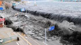Chia sẻ trải nghiệm về thảm họa động đất - sóng thần