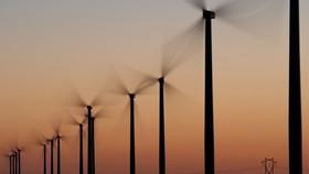 WWF hỗ trợ phát triển năng lượng tái tạo