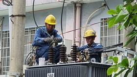 Nhân viên EVNHCMC kiểm tra lưới điện để đảm bảo  an toàn điện trong mùa mưa