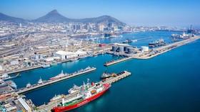 Nam Phi: Hệ thống cảng container tê liệt vì bị tấn công mạng