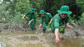 Lực lượng  Thanh niên  xung phong TPHCM tích cực trồng cây mới thay những cây bị gãy đổ tại rừng phòng hộ Cần Giờ. Ảnh:  HOÀNG HÙNG