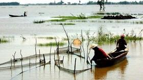 Lũ nhỏ về muộn nên người dân ĐBSCL khai thác thủy sản gặp khó khăn
