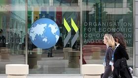 Đà phục hồi kinh tế toàn cầu không chắc chắn